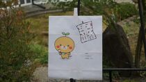 AG006<みきゃんデザイン>飾り凧1統・うちわ1枚【40pt】