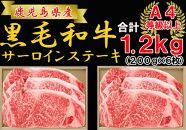 【応援特別品】鹿児島県産和牛サーロインステーキ 200g×6枚