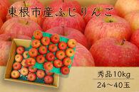 【山形県東根市産】ふじりんご秀品10kg BG43