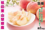 【2021年発送】山梨県産完熟桃 白桃系 約1kg(2~5玉)