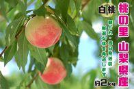 【2021年発送】山梨県産完熟桃 白桃系 約2kg(4~8玉)
