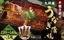 FY08-18九州産手焼き炭火うなぎ蒲焼3尾(1尾あたり120~149g)