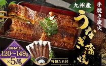 FY10-30九州産手焼き炭火うなぎ蒲焼5尾(1尾あたり120~149g)