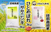B-24 元気くん市場宮城の美味しいお米食べ比べセット(A)