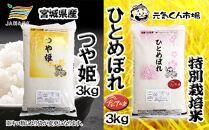 B-26 元気くん市場宮城の美味しいお米食べ比べセット(C)