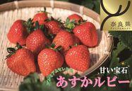 明日香村産いちご「プレミアムセレクトあすかルビー」(受付・お届けは12月~)