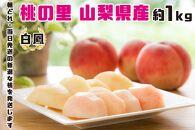 【2021年発送】山梨県産完熟桃 白鳳系 約1kg(2〜5玉)