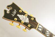 【ギター】S.Tsuji DA-17 Model
