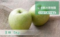 フルーツ王国余市産「王林」5kg【山本観光果樹園】