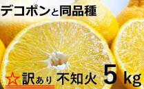 DP002 岡村農園の不知火【5kg】※訳あり品