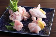 『オーガニック地鶏』京七谷赤地鶏の水炊きセット〈京都炭火串焼つじや〉