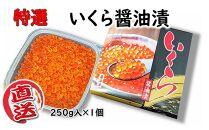 岩手県産 特選いくら醤油漬250g