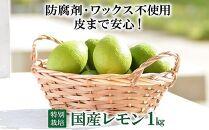 【特別栽培・減農薬】国産レモン1kg