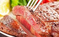 北海道産 和牛サーロインステーキ3枚<肉の山本>
