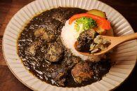 【美味しい森林保全】黒いスパイシーポークカレーセット(辛口×2食、大人の甘口×2食)【キコリの炭】