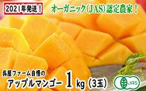 【2021年発送】アップルマンゴー1kg(3玉化粧箱)