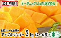 【2021年発送】アップルマンゴー2kg(4玉~6玉化粧箱)