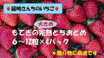 ☆贈り物に最適☆篠崎さんちのいちご もてぎの完熟大きめとちおとめ 6~12粒×4パック