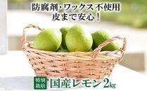 【特別栽培・減農薬】国産レモン2kg