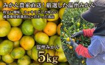 温州みかん5kg(2S~2L込)