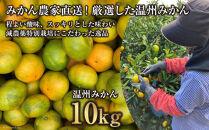 温州みかん10kg(2S~2L込)