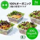 オーガニック野菜3種のサラダ 80gx4個