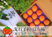 ◆【令和3年(2021)産・先行予約】近江今津の富有柿3L約3.0kg1箱12玉<生産者直売一貫体制>