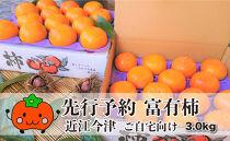 ◆【令和3年(2021)産・先行予約】近江今津の富有柿(ご自宅品向け)2L約3.0kg1箱14~16玉<生産者直売一貫体制>
