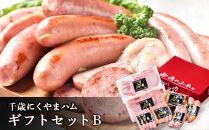 千歳にくやまハムギフトセットB【肉の山本】