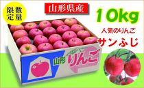 家庭用サンふじ 10kg(24~50玉)【ジェイエイてんどうフーズ】CX003