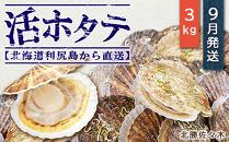 活ホタテ3㎏!~2021年9月発送~北海道利尻島から直送!【北勝佐々木】