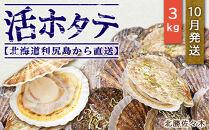活ホタテ3㎏!~2021年10月発送~北海道利尻島から直送!【北勝佐々木】