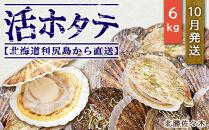 活ホタテ6㎏!~2021年10月発送~北海道利尻島から直送!【北勝佐々木】