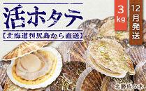 活ホタテ3㎏!~2021年12月発送~北海道利尻島から直送!【北勝佐々木】
