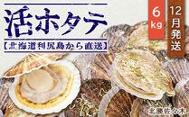 活ホタテ6㎏!~2021年12月発送~北海道利尻島から直送!【北勝佐々木】