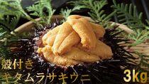 【2021年6月上旬から発送】殻付きキタムラサキウニ3kg
