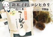 ◆【新米予約・令和3年(2021)産】農家直送近江米コシヒカリ5kg×3袋精米済