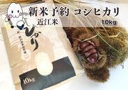 ◆【新米予約・令和3年(2021)産】農家直送近江米コシヒカリ10kg×1袋精米済