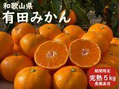 産直40年!和歌山県 武内園の完熟「有田みかん5kg」※光センサー選果