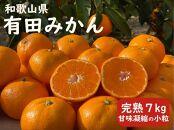 産直40年!和歌山県 武内園の「ひとくちみかん7kg甘味凝縮 極小粒」