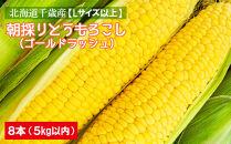 北海道千歳産【Lサイズ以上】朝採りとうもろこし(ゴールドラッシュ)8本5kg以内
