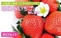 北海道千歳産【北海道限定品種】朝摘みいちごML混合約220g×2