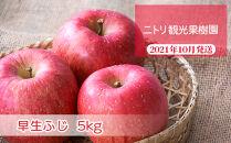フルーツ王国余市産「早生ふじ」5kg【ニトリ観光果樹園】