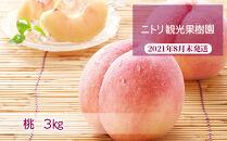 フルーツ王国余市産「桃」12玉~18玉3kg【ニトリ観光果樹園】