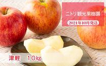 フルーツ王国余市産「津軽」10kg【ニトリ観光果樹園】