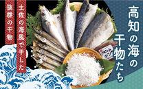 高知の海の干物たち<土佐の海風で干した抜群の干物を><高知市・南国市共通返礼品>【ポイント交換専用】