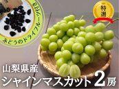 シャインマスカット山梨県産2房(600g以上品)&甲州葡萄のドライフルーツ付き【2021年発送】