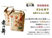 【2020年産】竜の舞 こしひかり(白米)5kgX2袋入