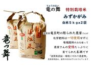 【2020年産】竜の舞 みずかがみ(白米)5kgx2袋入