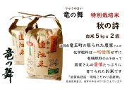 【2020年産】竜の舞 秋の詩(白米)5kg袋2個入